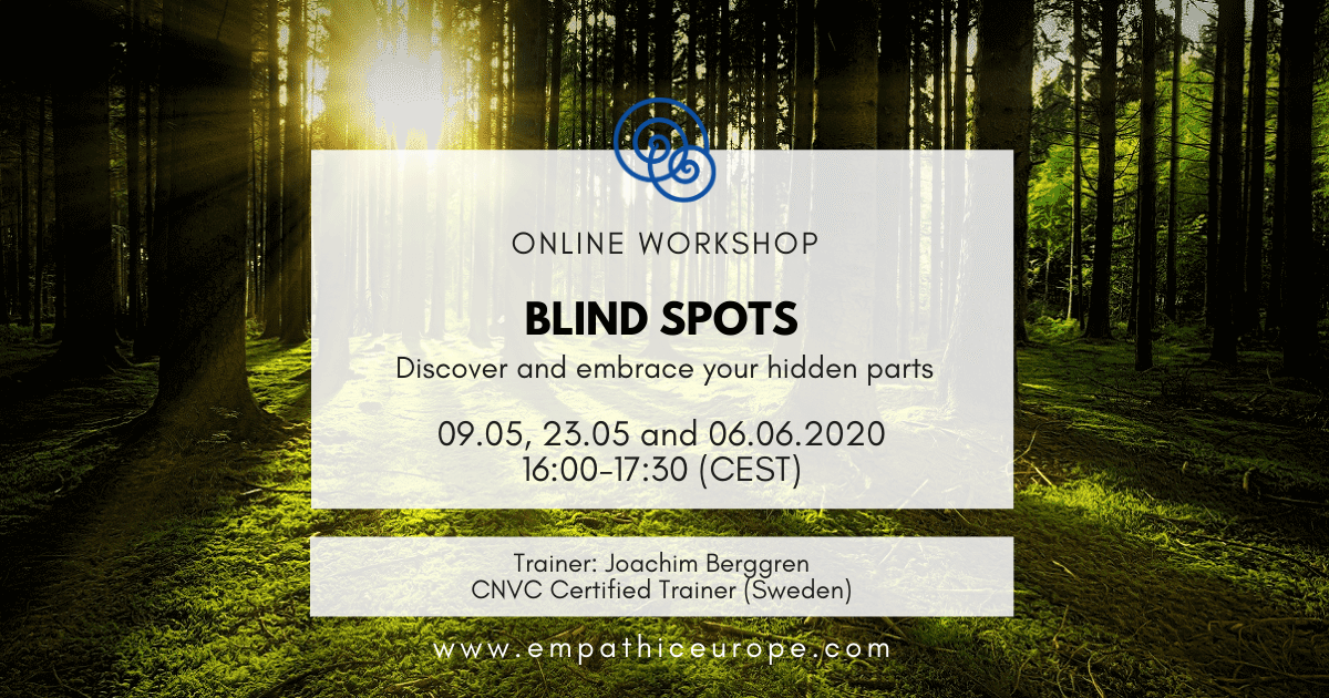 Blind Spots – Discover and embrace your hidden parts